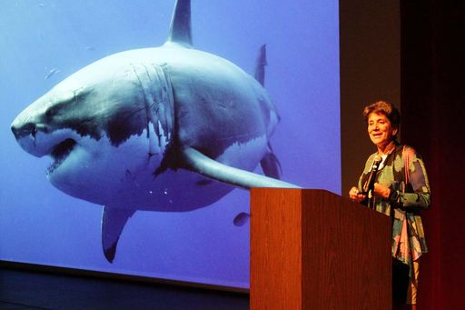 "Marine biologist Barbara Block upacks her ""Voyage to the White Shark Café"""